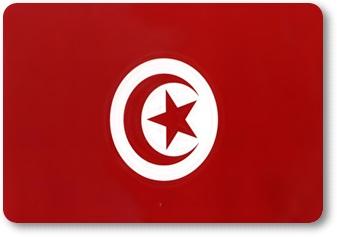 تونس : الشبكة العربية تطالب السلطات بحماية الصحفيين أثناء القيام بعملهم وتستنكر الاعتداء عليهم اثناء ندوة صحفية