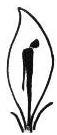 الجمعية المصرية لمناهضة التعذيب
